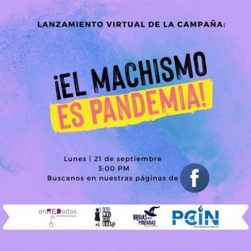 cartel lanzamiento de la campaña el machismo es pandemia