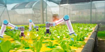 plants & robots